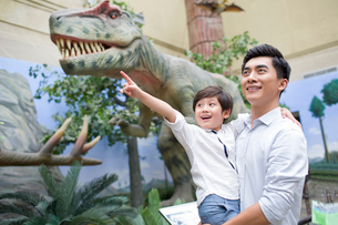 Young father and son in museum of natural historyの写真素材 [FYI02219751]