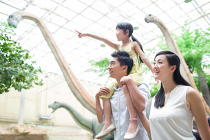 Young family in museum of natural historyの写真素材 [FYI02219754]