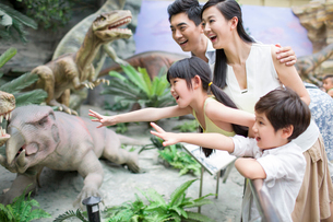Young family in museum of natural historyの写真素材 [FYI02219773]