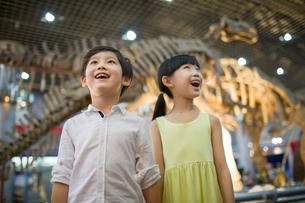 Children in museum of natural historyの写真素材 [FYI02219925]