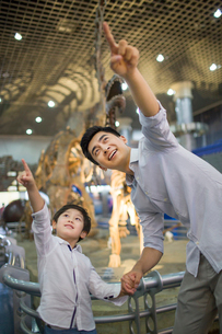 Young father and son in museum of natural historyの写真素材 [FYI02220055]
