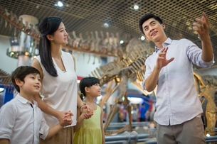 Young family in museum of natural historyの写真素材 [FYI02220145]