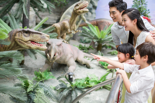 Young family in museum of natural historyの写真素材 [FYI02220148]