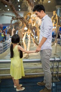 Young father and daughter in museum of natural historyの写真素材 [FYI02220177]