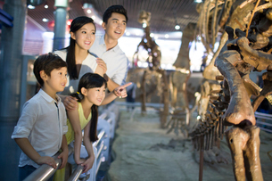 Young family in museum of natural historyの写真素材 [FYI02220308]