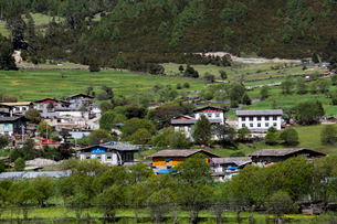 Beautiful village and trees in Tibet, Chinaの写真素材 [FYI02222506]