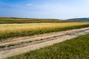 Grassland scenery in Hebei province, Chinaの写真素材 [FYI02222935]