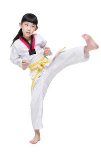 Cute girl practicing Tae Kwon Doの写真素材 [FYI02224116]