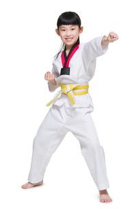 Cute girl practicing Tae Kwon Doの写真素材 [FYI02224307]