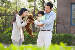 Happy young family with their pet dogの写真素材 [FYI02224739]