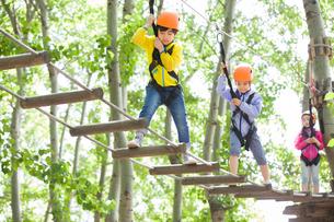 Happy children playing in tree top adventure parkの写真素材 [FYI02224746]
