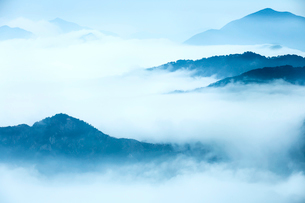 Mt Huangshan in Anhui province,Chinaの写真素材 [FYI02224789]