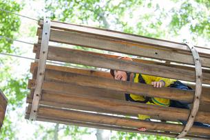 Little boy playing in tree top adventure parkの写真素材 [FYI02224837]