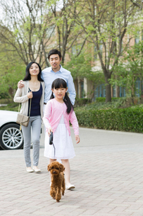 Young family walking with their pet dogの写真素材 [FYI02225005]