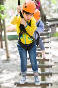 Happy children playing in tree top adventure parkの写真素材 [FYI02225174]