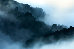 Mt Huangshan in Anhui province,Chinaの写真素材 [FYI02225343]