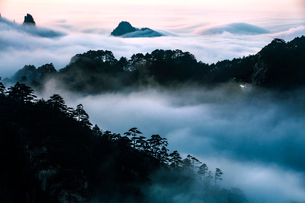 Mt Huangshan in Anhui province,Chinaの写真素材 [FYI02225384]
