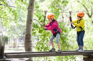 Happy children playing in tree top adventure parkの写真素材 [FYI02225652]