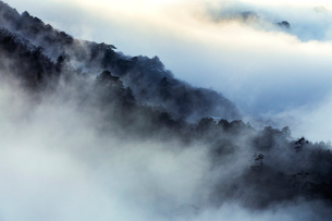 Mt Huangshan in Anhui province,Chinaの写真素材 [FYI02225941]