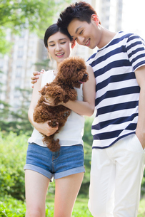 Young couple walking with a cute dogの写真素材 [FYI02225962]
