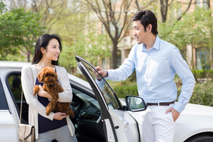 Young couple getting out of car with their pet dogの写真素材 [FYI02225970]