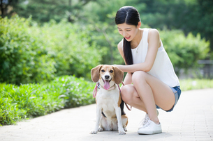 Young woman playing with a cute dogの写真素材 [FYI02226072]