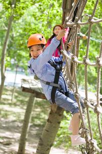 Happy children playing in tree top adventure parkの写真素材 [FYI02226075]