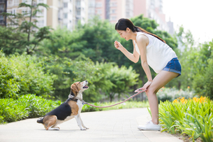 Young woman playing with a cute dogの写真素材 [FYI02226246]