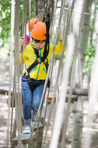 Little boy playing in tree top adventure parkの写真素材 [FYI02226320]