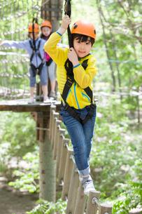 Happy children playing in tree top adventure parkの写真素材 [FYI02226602]