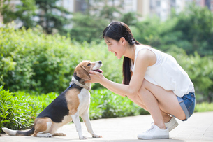 Young woman playing with a cute dogの写真素材 [FYI02226682]