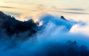 Mt Huangshan in Anhui province,Chinaの写真素材 [FYI02227003]