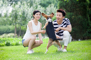 Young couple playing with a cute dogの写真素材 [FYI02227167]