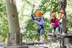Happy children playing in tree top adventure parkの写真素材 [FYI02227246]