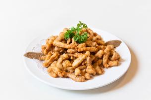 Fried pork tenderloinの写真素材 [FYI02227449]