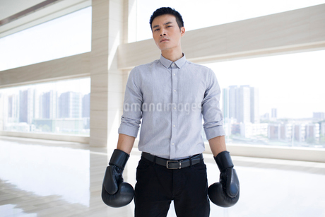 Young businessman with boxing glovesの写真素材 [FYI02227847]