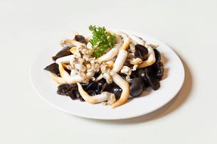 Mu-err mushroom and cockleの写真素材 [FYI02228922]