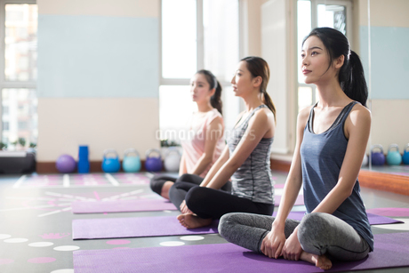 Young women exercising at gymの写真素材 [FYI02230284]