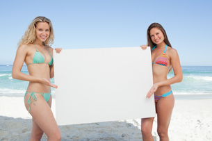 Two friends smiling while holding a blank poster by the seaの写真素材 [FYI02230870]