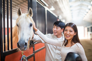 Cheerful young Chinese couple with horseの写真素材 [FYI02231108]