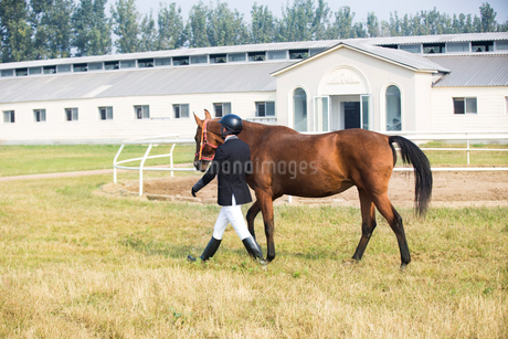 Chinese male rider walking on grassy field with horseの写真素材 [FYI02231444]