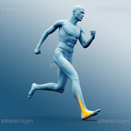 Blue human figure running with highlighted ankleの写真素材 [FYI02233169]