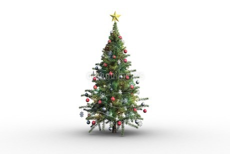 Christmas tree on white backgroundのイラスト素材 [FYI02234024]