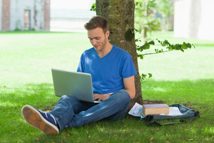 Content handsome student sitting under tree using laptopの写真素材 [FYI02234162]