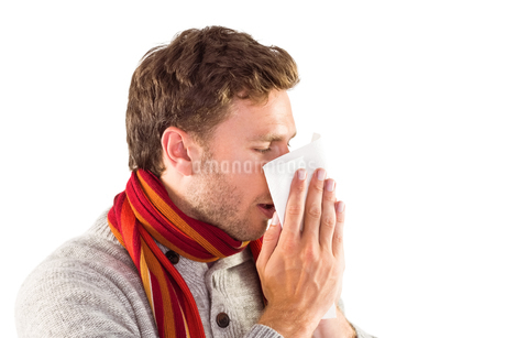 Man blowing nose on tissueの写真素材 [FYI02234306]