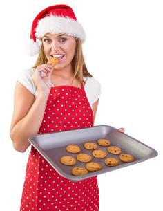 Festive homemaker showing hot cookiesの写真素材 [FYI02234727]