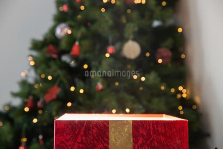 Light shining from christmas presentの写真素材 [FYI02234732]