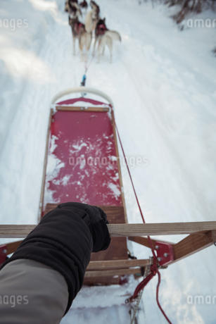 Woman riding sledge on a snowy landの写真素材 [FYI02235319]