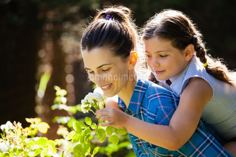 Daughter smelling rose with mother while enjoying piggybackの写真素材 [FYI02235757]