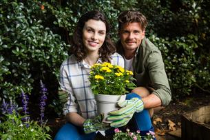 Couple holding sapling plant in gardenの写真素材 [FYI02235898]